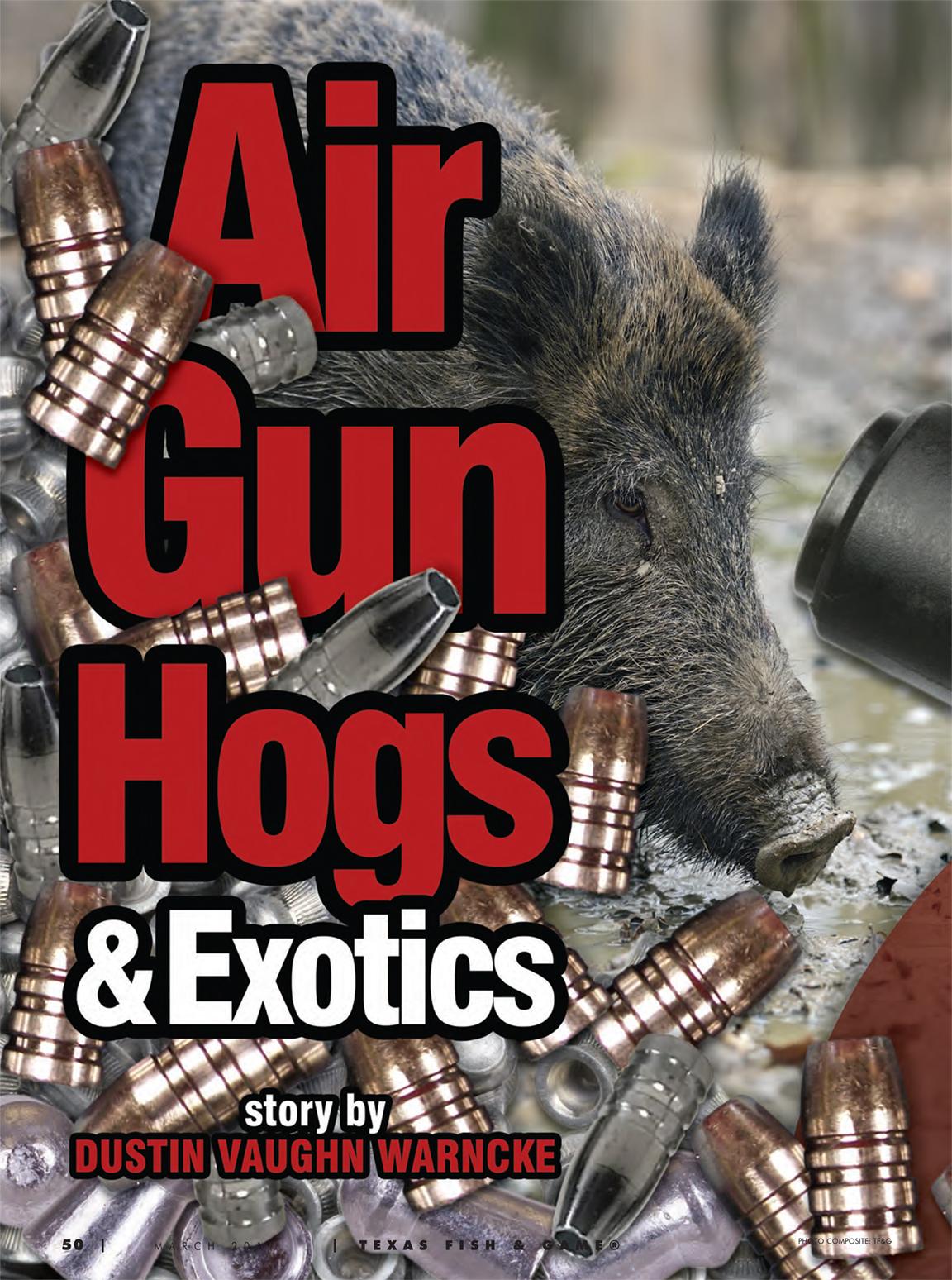 the modern pneumatic airgun pdf