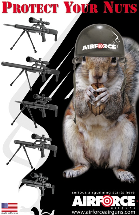 AirForce Airguns Protect Your Nuts Poster